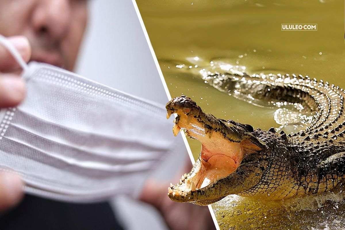 Violó la cuarentena para ir de pesca y se lo comió un cocodrilo