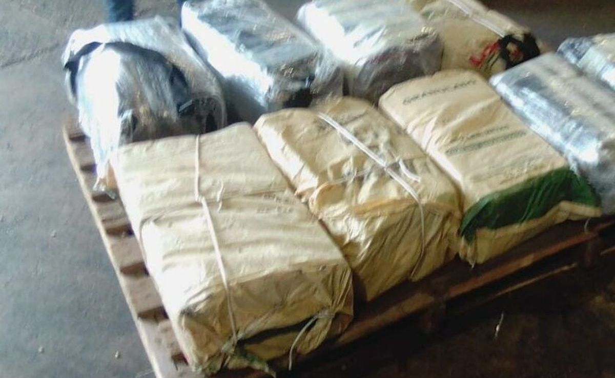 ESPAÑA: Ocupan 250 kilos cocaína en contenedor procedente de la R. Dom.