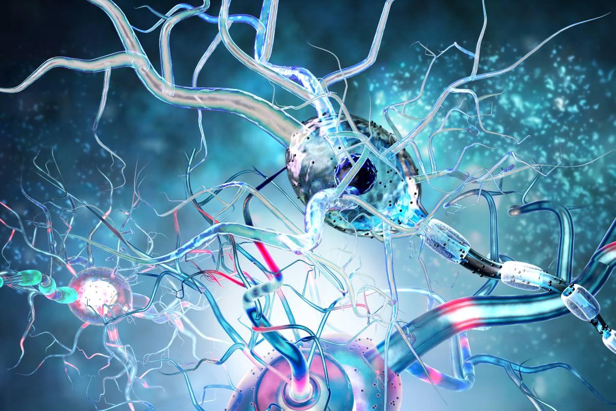 Neurólogo del Moscoso Puello explica qué hacer durante una crisis epiléptica. Fuente externa.